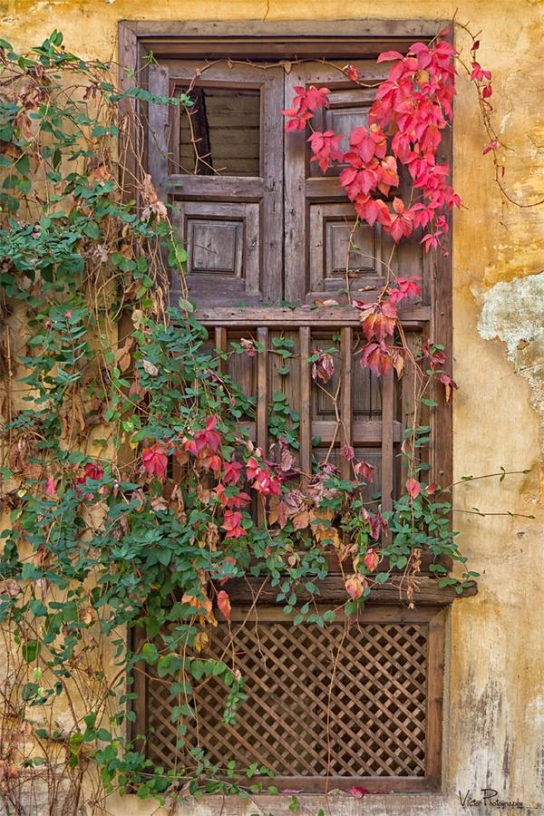 forgotten corner in the alhambra islamic inspiring heritage pinterest spanien fenster. Black Bedroom Furniture Sets. Home Design Ideas
