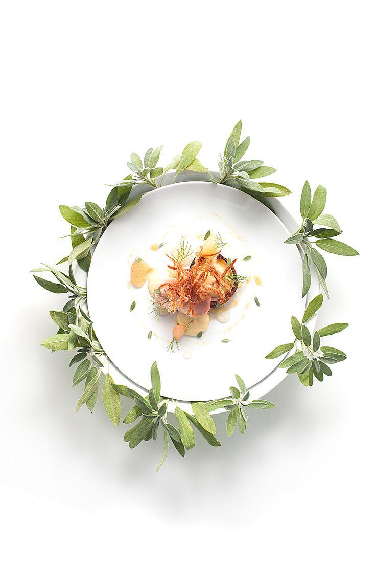 Best 25 modernist cuisine ideas on pinterest sous vide for Art and cuisine ceramic cookware