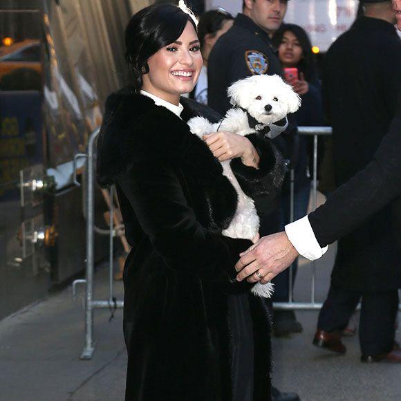Demi Lovato est en deuil   HollywoodPQ.com
