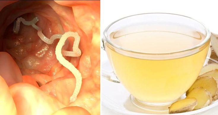 Ce remède naturel vous permet de vous débarrasser de tout type de parasite dans votre corps !