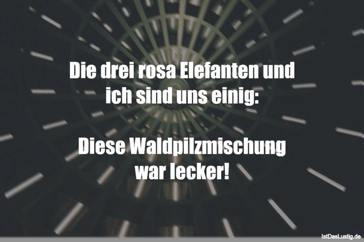 Die drei rosa Elefanten und ich sind uns einig:  Diese Waldpilzmischung war lecker! ... gefunden auf https://www.istdaslustig.de/spruch/2844 #lustig #sprüche #fun #spass