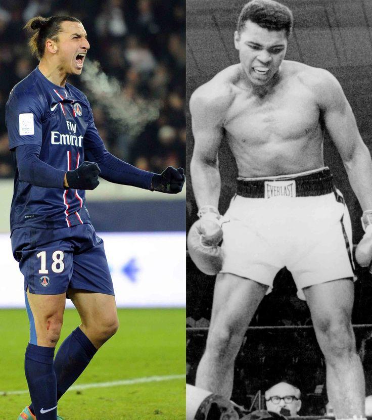 Zlatan Ibrahimovic, le Mohamed Ali de la Ligue 1
