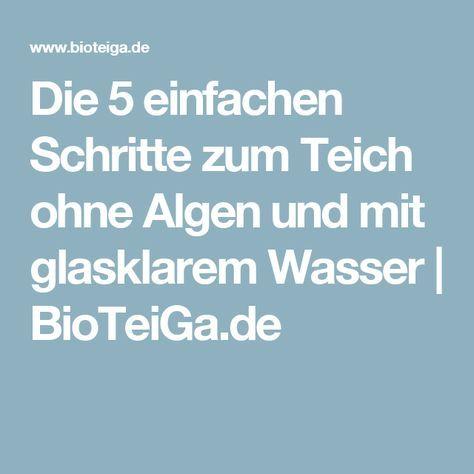 Die 5 einfachen Schritte zum Teich ohne Algen und mit glasklarem Wasser   BioTeiGa.de