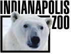 Indianapolis Zoo has up close and personal encounter with tiger - fun!  #indiana
