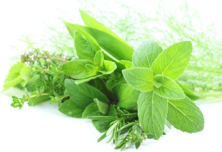 guida su come utilizzare erbe e spezie in cucina