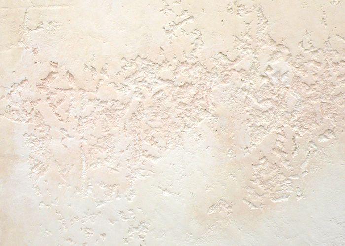 【キャットフェイス】パターン カルクウォール販売 スイス漆喰の塗り壁リフォーム | Natura Y's [ナチュラワイズ]