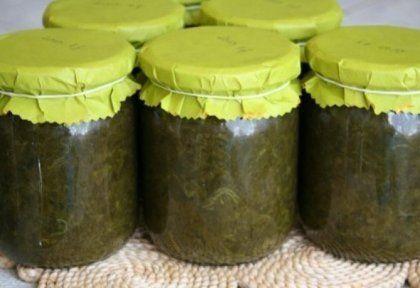 Sóskapüré télire - tartósítószer nélkül | NOSALTY – receptek képekkel
