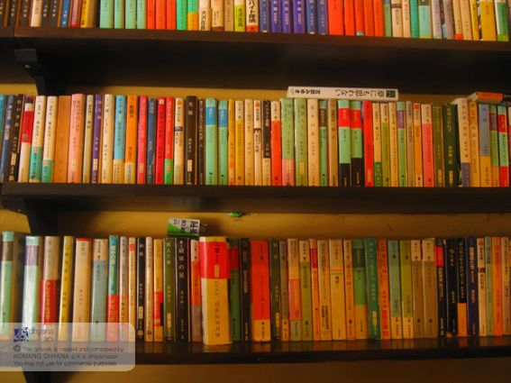 A bookcase. Wish I could have one set of this.