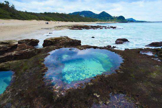 奄美大島   フォトギャラリー   奄美大島 ホテル(リゾートホテル)温泉   THE SCENE