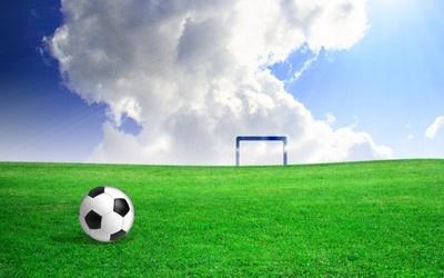 Soccer ball on field wallpaper