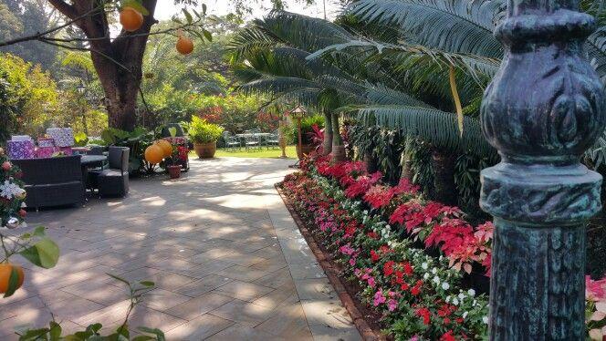 Capricorn Gardens
