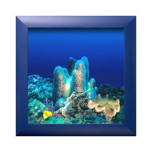 Wall Aquarium Coral Reef Blue, $280, now featured on Fab.