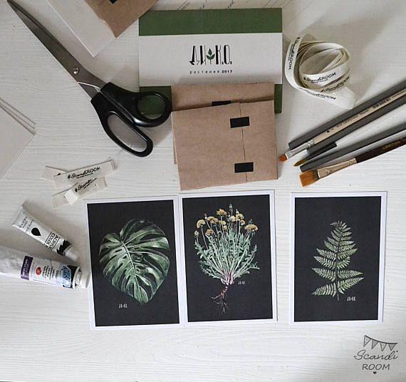 Set of 3 Plants cards. Illustrated Cards. Botanical Cards. Art