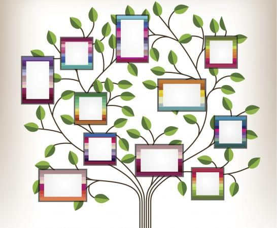 Best 25+ Family tree for kids ideas on Pinterest Family tree - family tree template