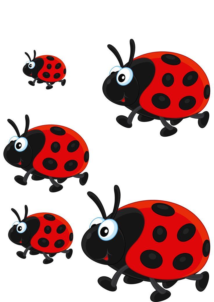 Картинки с насекомыми для дошкольников божья коровка