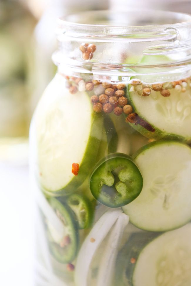 Quick Sweet Refrigerator Pickles — Pip and Ebby