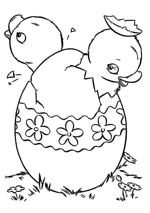 Beautiful Chicks Coming Out Of Easter Eggs Coloring Page Discover
