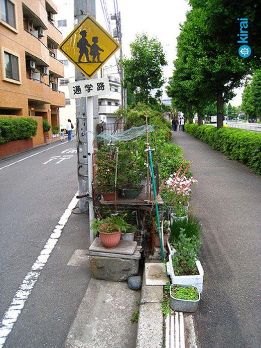 guerilla-gardening-tokyo