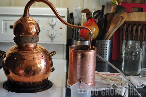 Experiments in Plant Hydrosol Distillation