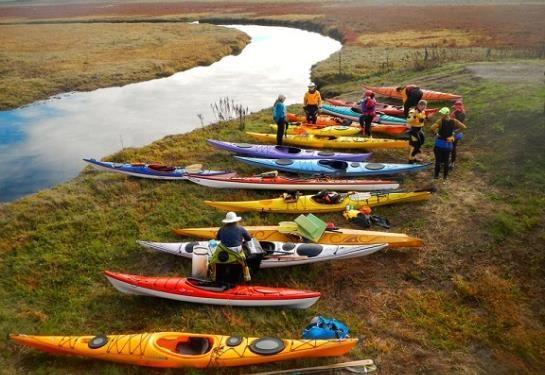 Sonoma County's Hidden Treasure: Kayaking Estero Americano  http://www.paddlingcalifornia.com/article_kayaking_estero_americano.html