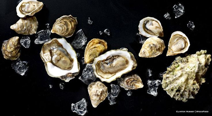 Oysters From A to Z: 26 Things to Know