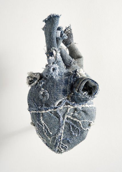 Anatomical Denim / Anne Wolf