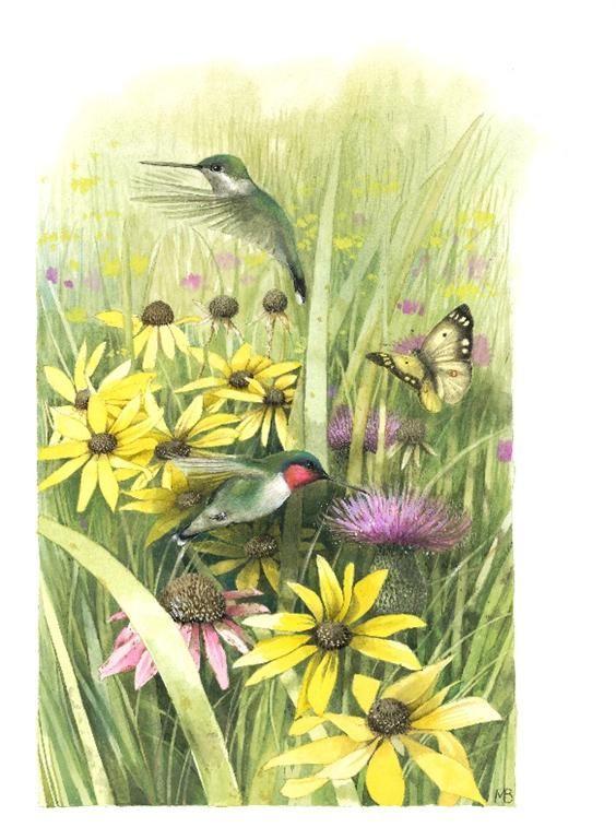 Humming Birds w/Thistles and Black-eyed Susans