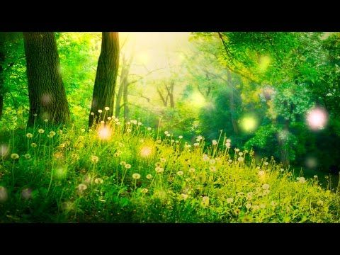 Journey Into A Magical World: Guided Meditation >>> http://www.purposefairy.com/75341/journey-magical-world-guided-meditation/