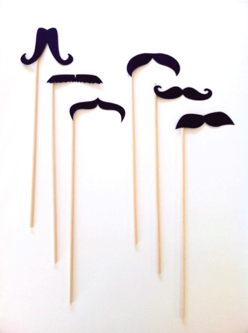Moustache on a stick
