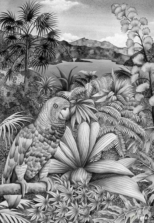132 best color me zen grayscale images on pinterest Grayscale coloring books for adults