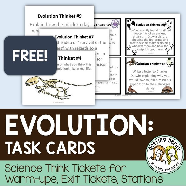 FREE - Evolution task cards for science