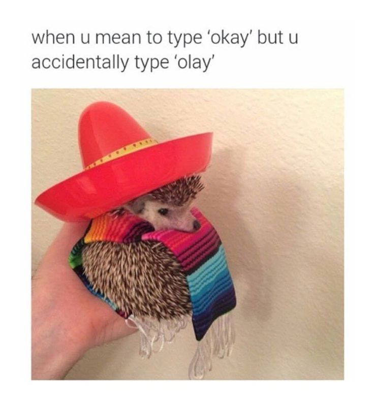 Type Olay #Funny, #Okay, #Type