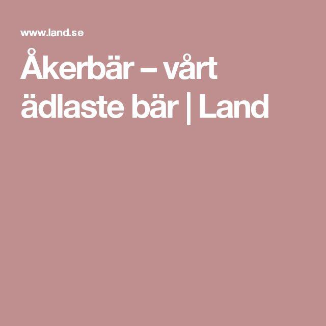 Åkerbär – vårt ädlaste bär | Land