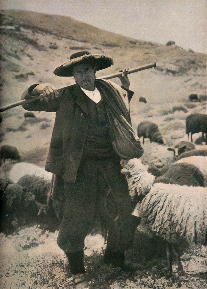 pastor  serra da estrela | Etnografia em imagens: Trajo de Pastor da Serra da Estrela - 1911