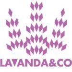 LAVANDA&CO+ya+tiene+página+web+y+envía+a+toda+España!!!!!