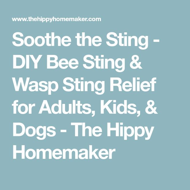 Soothe the Sting - DIY Bee Sting & Wasp Sting Relief for Adults, Kids, & Dogs - The Hippy Homemaker