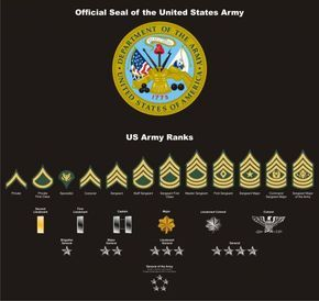 U.S. Army Seal-ranks and patches vectored.