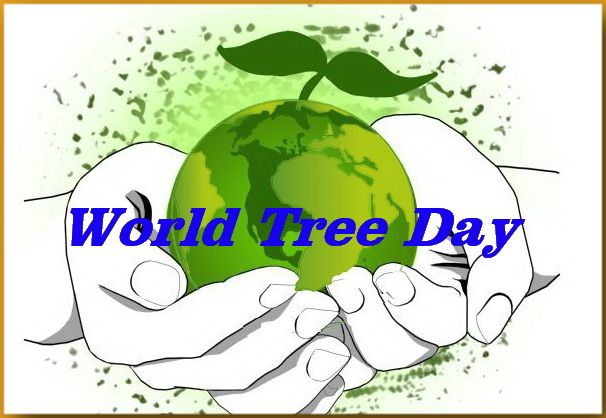 Bersama-sama mencintai dan lindungi lingkungan sekelilingmu.  Satu gerakan melindungi alam, akan memberikan pengaruh yang luar biasa.  Selamat Hari Pohon Sedunia