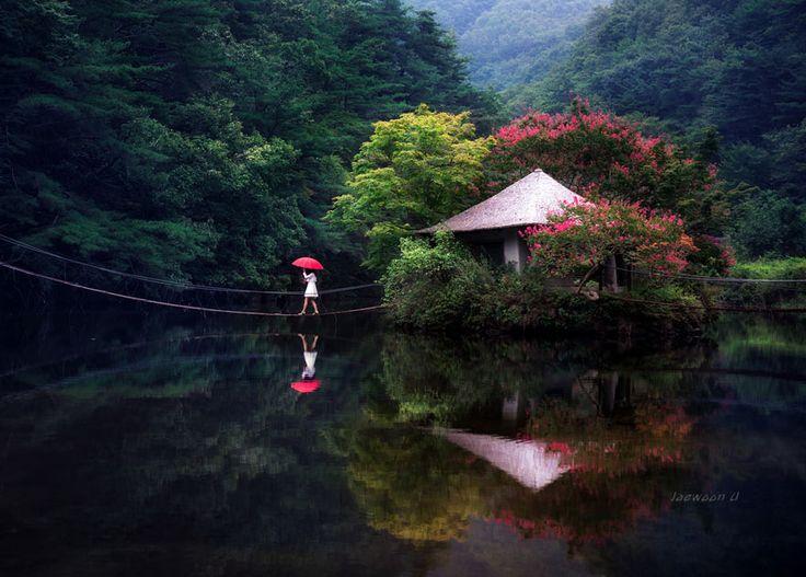 réflexion-paysage-photographie-jaewoon-u-38