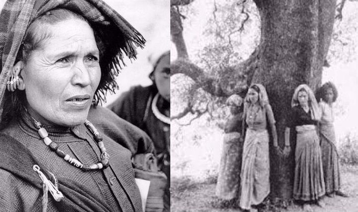 In the 1970s, an organized resistance to the destruction of forests spread throughout India and came to be known as the Chipko movement. The name of the movement comes from the word 'embrace', as the villagers hugged the trees, and prevented the contractors' from felling them.