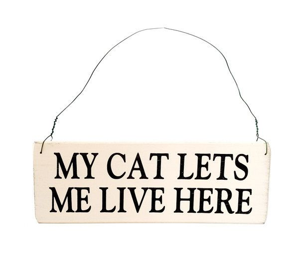 My Cat Lets Me Live Here