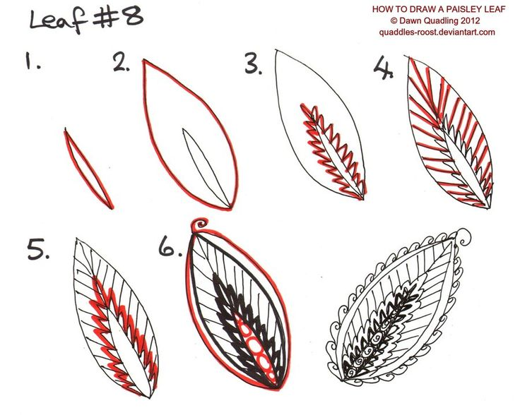 How to draw Paisley Leaf 08 by *Quaddles-Roost on deviantART
