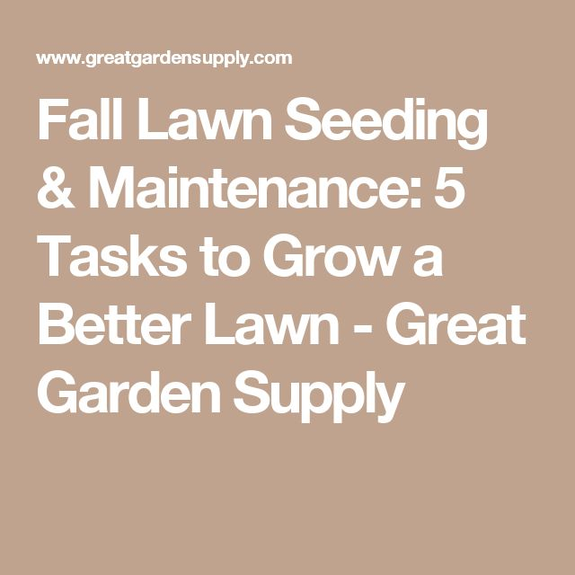 Best 25 gardening supplies ideas on pinterest garden for Fall yard clean up checklist