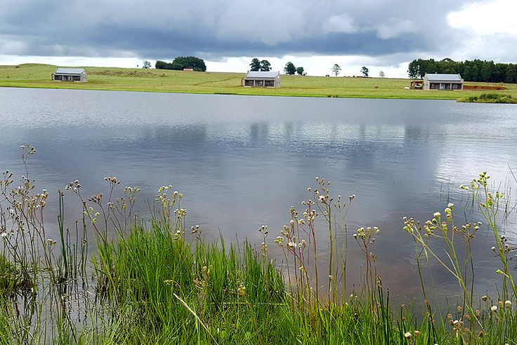 Blue Crane Farm Self Catering Holiday Cottage In Dullstroom - Mpumalanga See more http://www.wheretostay.co.za/blue-crane-farm-self-catering-accommodation-dullstroom Situated approximately 10 minutes' drive from Dullstroom, the farm boasts 2 beautiful dams where guests can enjoy fly fishing. Offering two fully equipped units - a 3 bedroom house & a 2 bedroom house both situated between 60 and 100m from each other, and approx 50m from the edge of the water of the big dam.