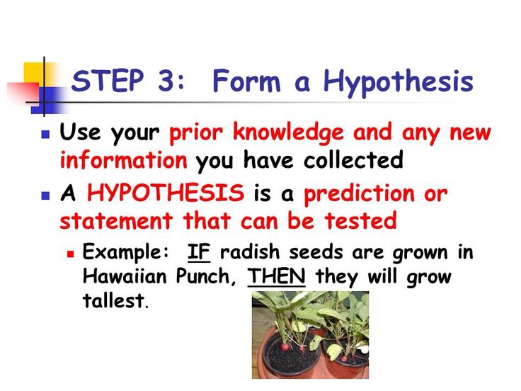 what is a hypothesis for a science fair project