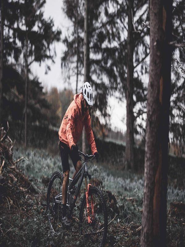 Bikes 365 Mountainandroadbikesbrands Road Bike Brands Bicycle