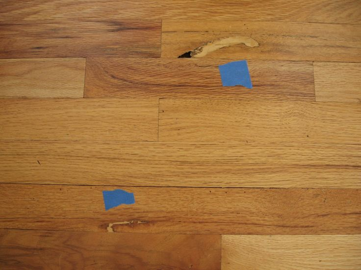 Glue For Wood Floor Joints