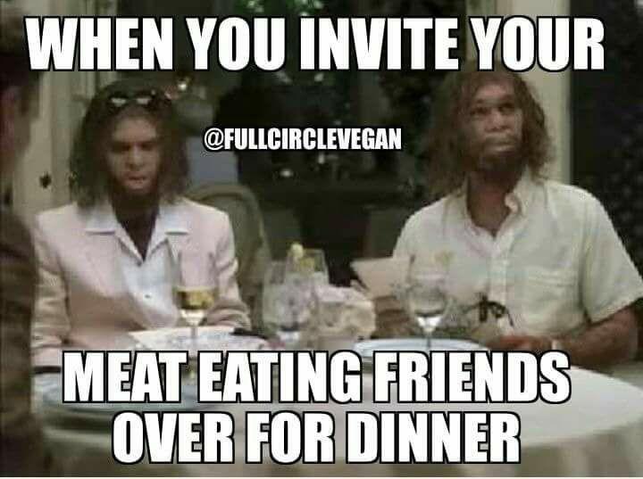 73 Best Funny Vegan Memes Images On Pinterest Funny