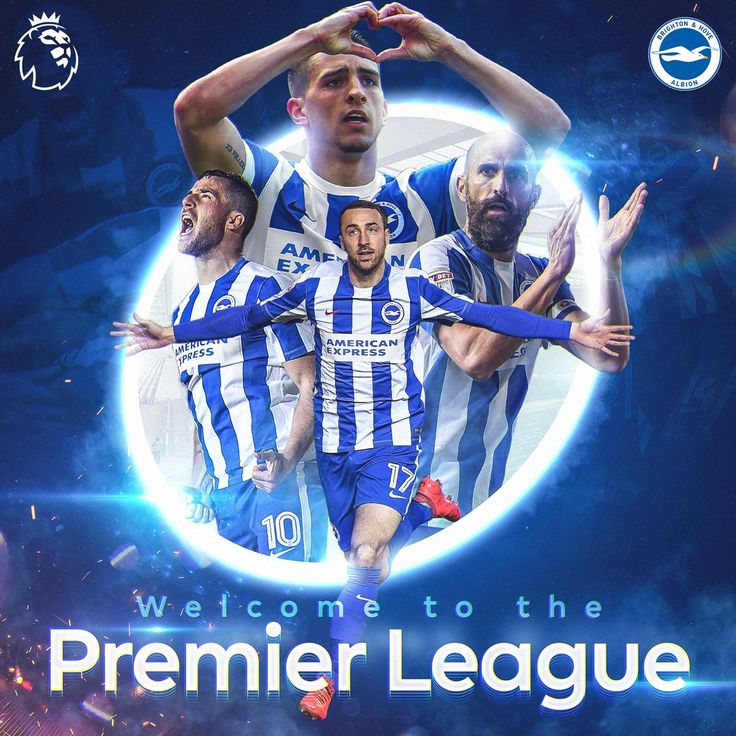 Christmas Party Brighton: Brighton & Hove Albion Images On Pinterest