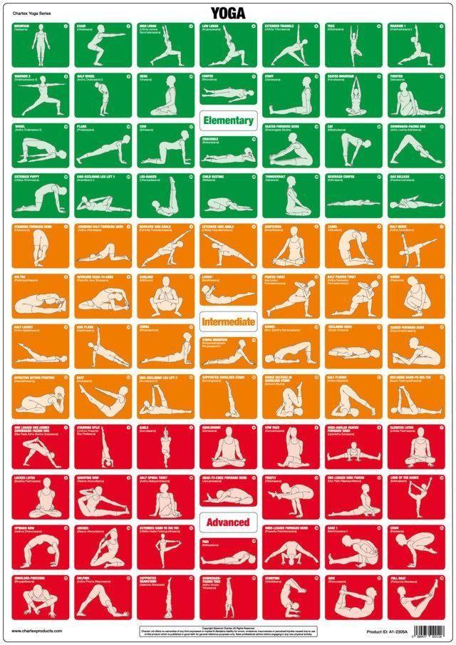 Yoga Poses And Exercise Instructional Chart Yoga Poses Chart Workout Chart Yoga Poses Names